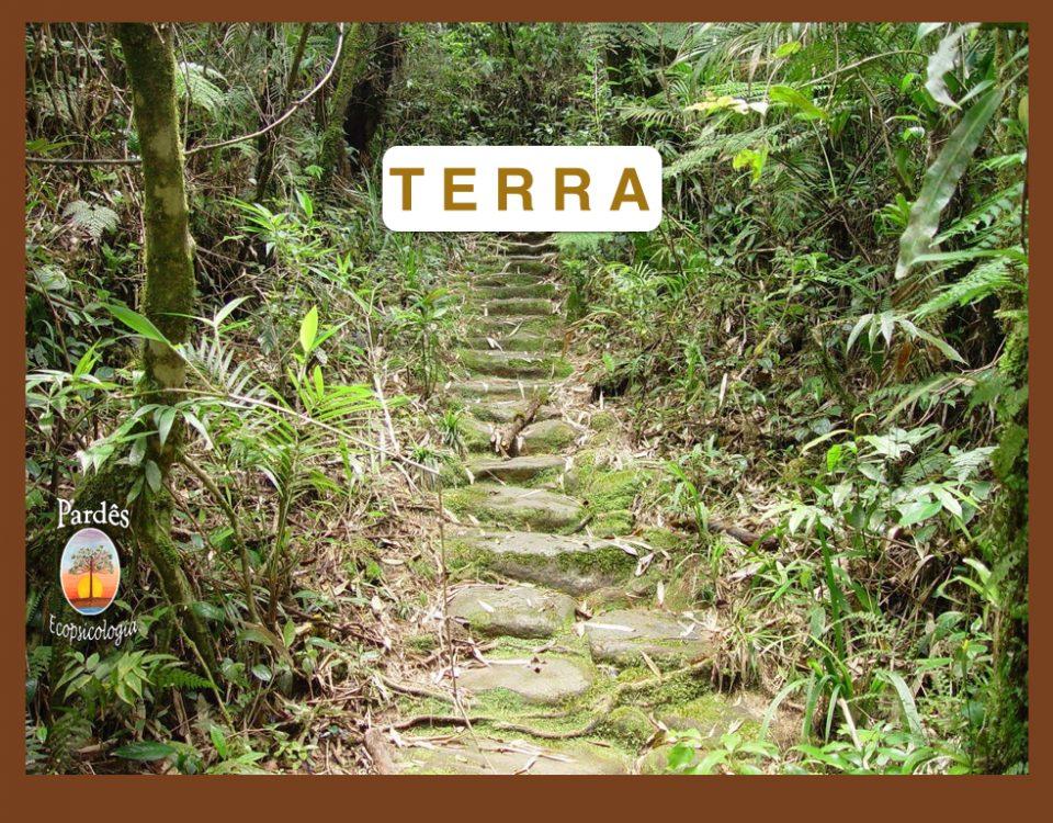 TERRA JPG.001